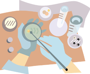 Wie lange halten sich Kosmetik Inhaltsstoffe